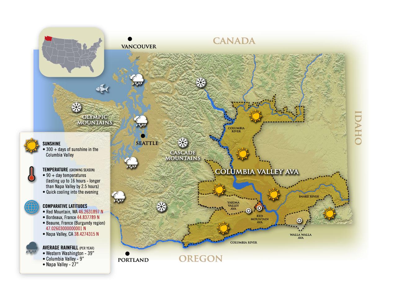 Vineyards  Corliss Estates  Walla Walla Washington